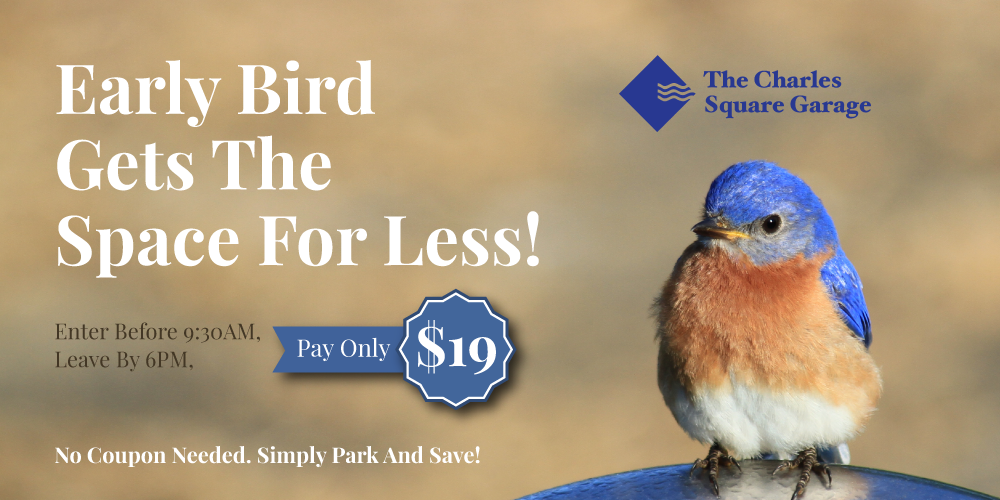 Early bird get the space for less Enter before 9:30AM Leave by 6:00PM pay only $19 No coupons needed Simply park and save